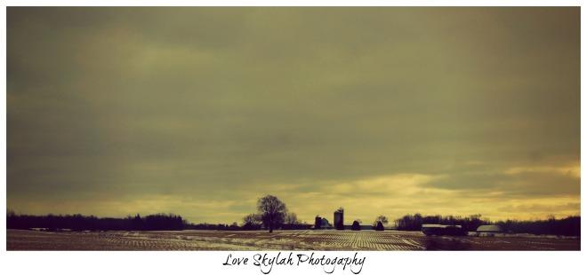 Ontario Fields.jpg