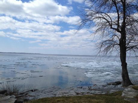 Lake Ontario.jpg